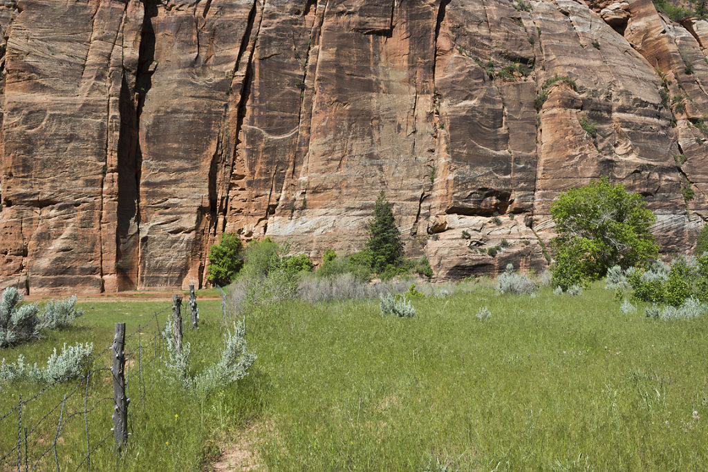 Fence and Red Cliff