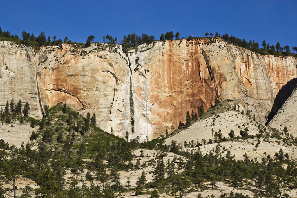 Looking Up at West Rim